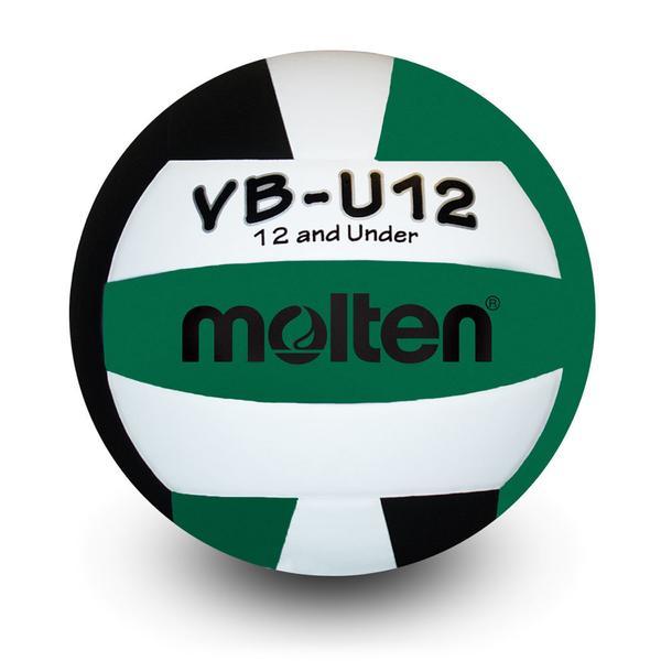 Molten Volleyball