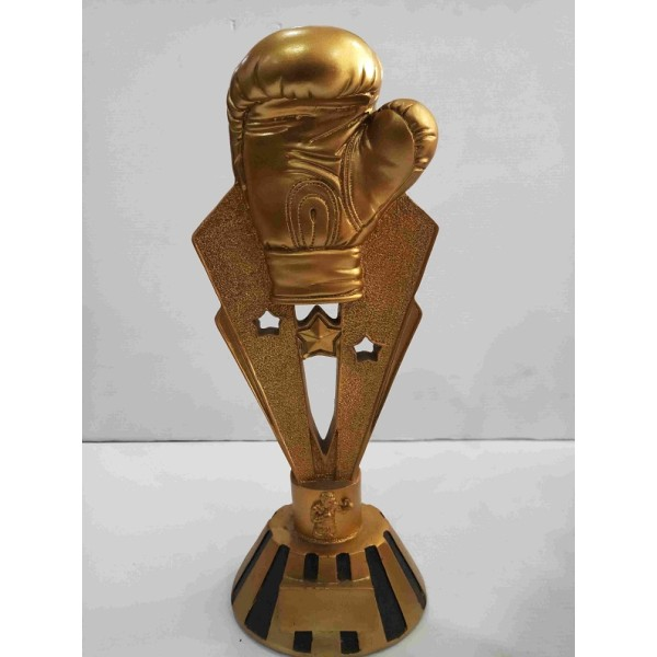 Boxing Award