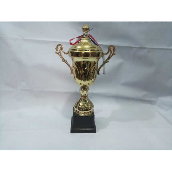 Chinese Trophy 001