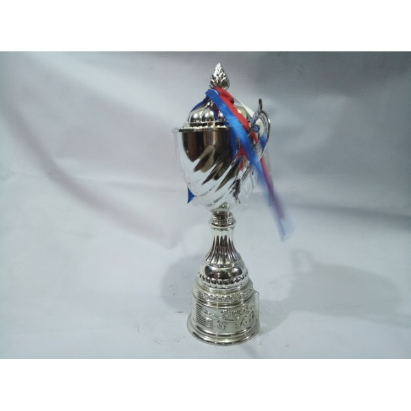 Chinese Trophy 006 (Silver)