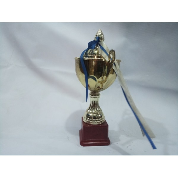 Chinese Trophy 008 (Gold)