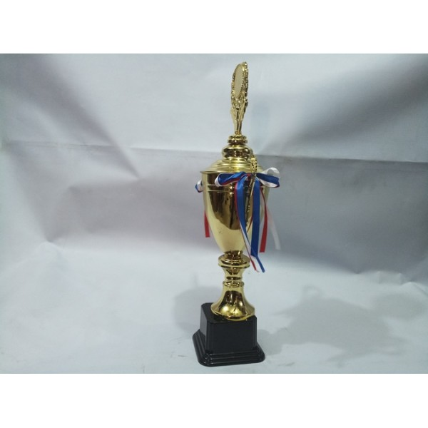 Chinese Trophy 011 (Small)